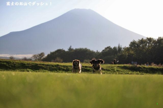 富士のお山でダッシュ!.jpg